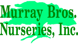 Murray Brothers Orchard Park NY