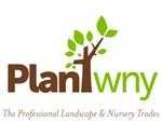PLANT WNY 150 PX