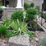 curb appeal at Lewiston GardenFest