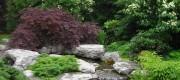 waterfall Williamsville Garden Walk