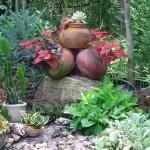 Clarence southwestern garden