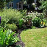 South Buffalo side garden