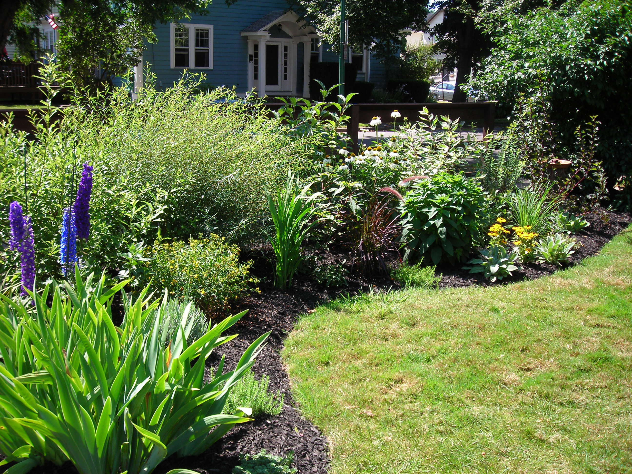 Border garden provides privacy in south buffalo buffalo for How to landscape a garden