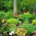 back garden Grand Island
