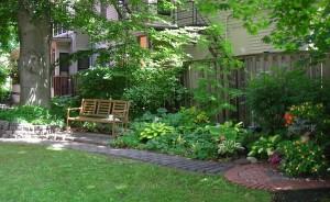 backyard garden on West Ferry in Buffalo