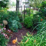 inside front garden Amherst