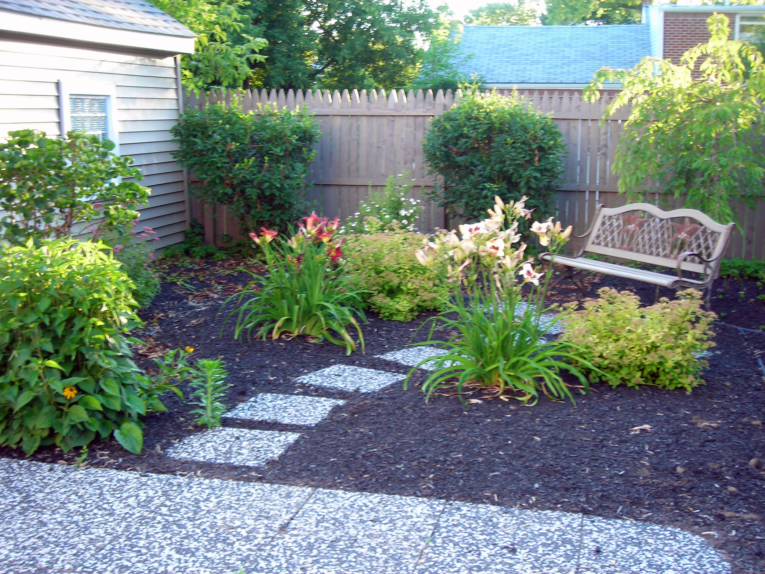 No grass back 1 buffalo for Garden design ideas without grass low maintenance