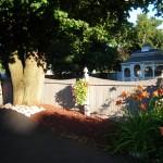 Garden in Eggertsville Amherst