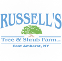 Russells Tree and Shrub Farm East Amherst NY