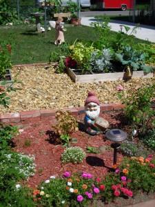 garden from abandoned lot in Buffalo NY