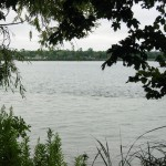 gardeners conserve Great Lakes