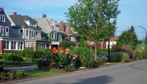 median gardens in University Heights, Buffalo