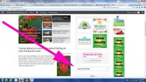 search tool on Buffalo-NiagaraGardening