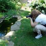 blogger in Buffalo garden