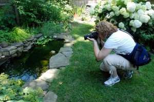 blogger in Buffalo garden