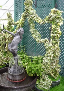 ivy arch in pots near fountain Buffalo& Erie County Botanical Gardens