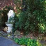 bamboo and fountain in Niagara County