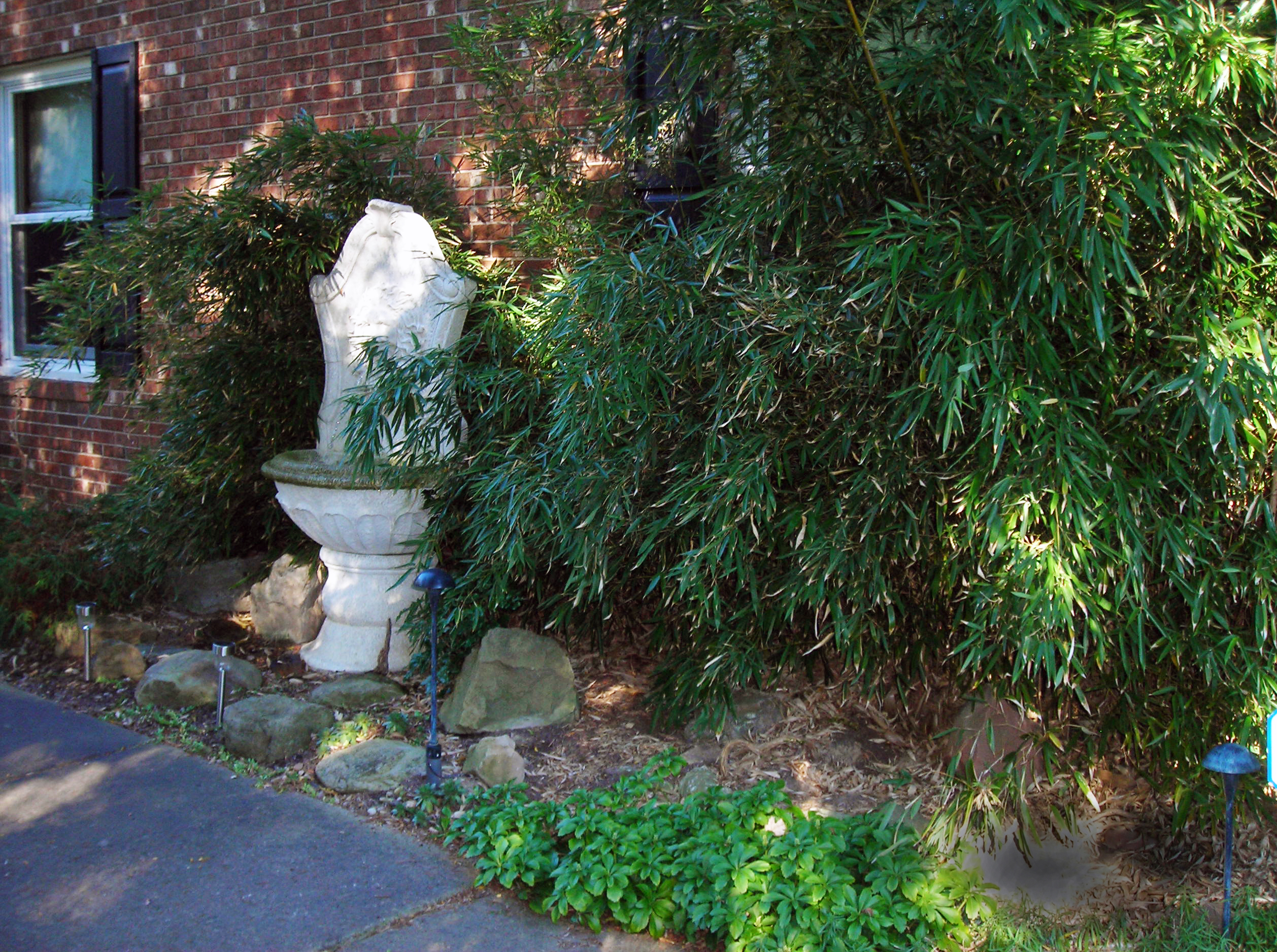 bamboo and fountain in Niagara County