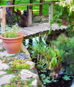 stream and bridge in Youngstown NY garden