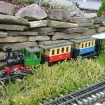 Western New York Garden Railway Henderson train