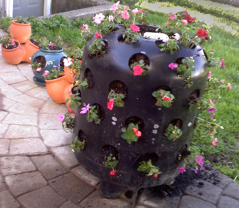 2012 pool filter flowers in Cheektowaga NY