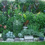Anne Gareis side garden 1 in Buffalo NY