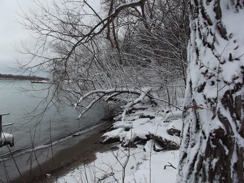 Glenn Krisher snowy photo in Youngstown NY