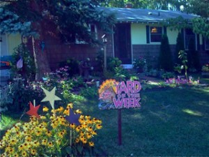 Judy Lewis Yard of the Week in Youngstown