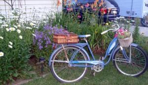 Old Fashion Bike in Lancaster NY