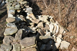 Stone Wall Stumble & Fall