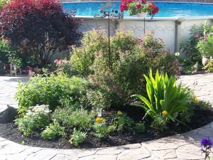 garden 4 on Tim Tam Terrace in West Seneca NY