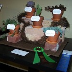 """We Are Family"" Lancaster Garden Club ECF Winner"