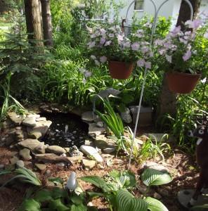 pond from Glenn Krisher 2