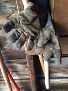 still life of gardening gloves and tools from Trudy Stern in Western New York