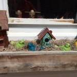 window box from Norma Mergenhagen in Holland NY