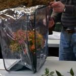 mini greenhouse in Buffalo NY