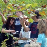 Horticulture Scholarships at Niagara County Community College