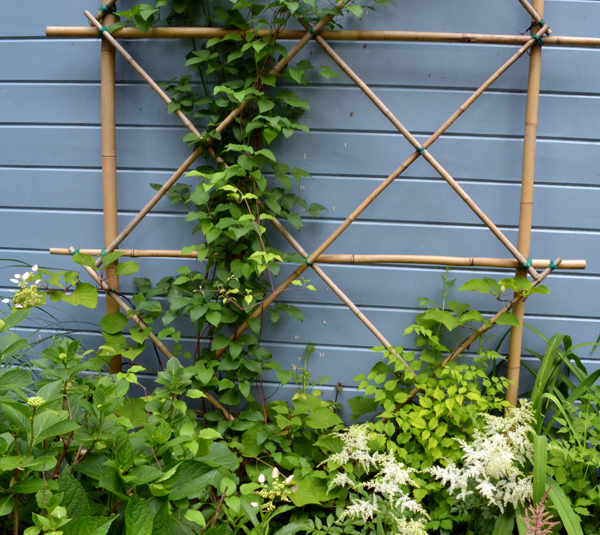 bamboo trellis on Parkside Garden Tour