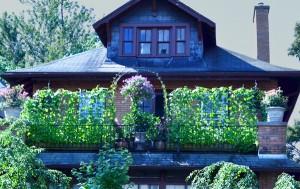 balcony on Summer near Norwood in Buffalo NY