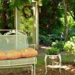 fall garden tip from Albion NY