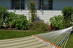 hammock and garden in Amherst NY