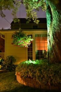 night garden walk in Buffalo NY area 200x300 Inground Pools Buffalo Ny