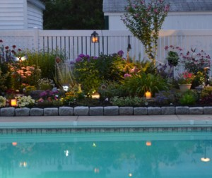 poolside garden at night in Buffalo NY area