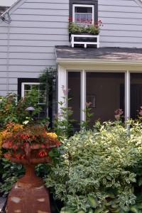 window box at Hamburg NY home