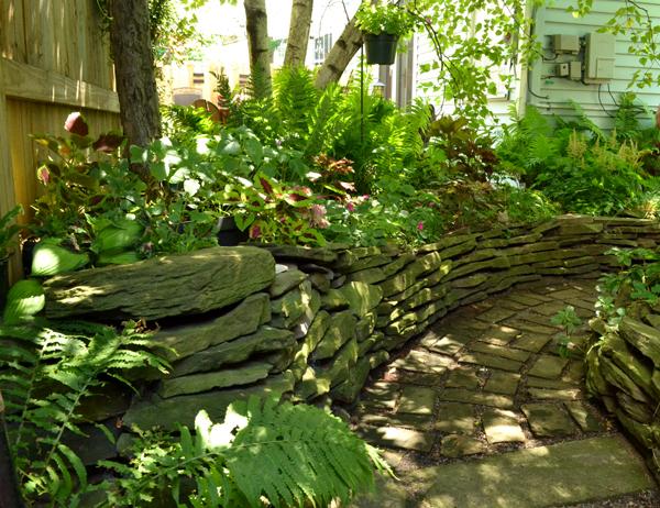 backyard garden on Summer St in Buffalo NY