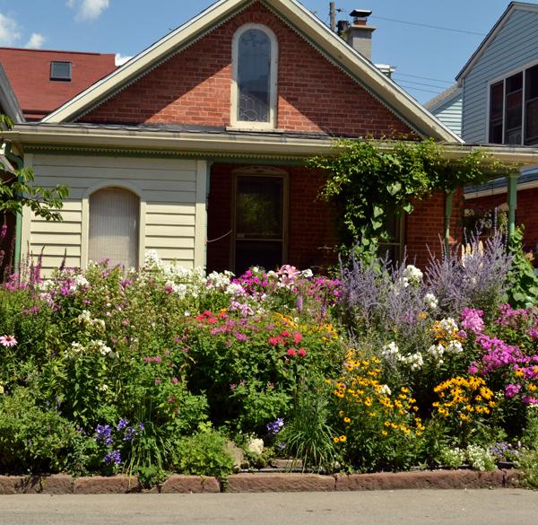 front garden on Summer Street Buffalo NY