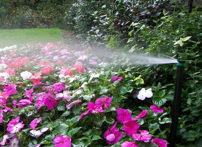 irrigate garden in Western New York