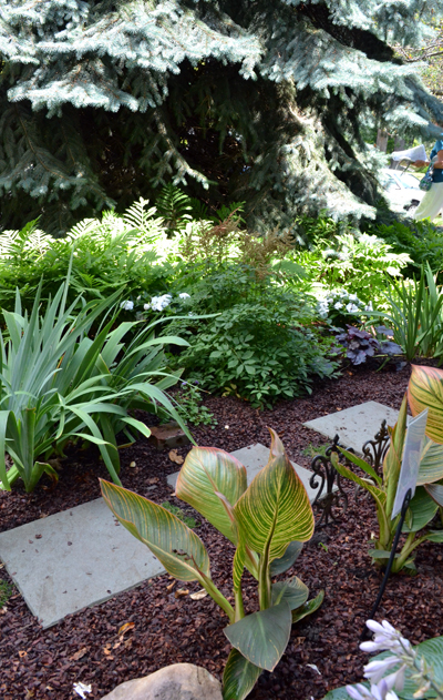 grassless front yard in Buffalo NY closeup | Buffalo ... on Grassless Garden Ideas id=75821