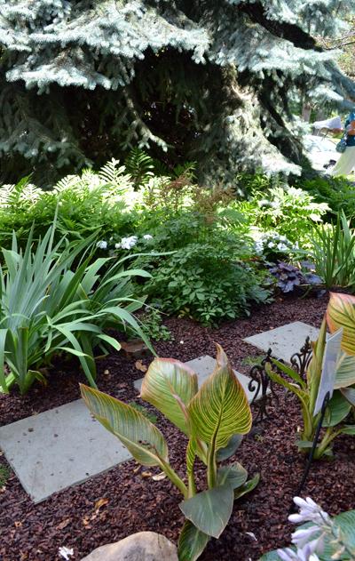 Grassless front yard in buffalo ny closeup buffalo for Grassless garden designs
