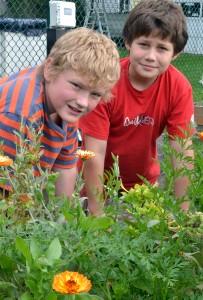 two boys in Hamburg NY school garden
